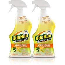 OdoBan Odor Eliminator & Disinfectant Ready-to-Use, Citrus Scent (32 oz., 2 pk.)