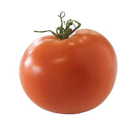Kamuela Tomato (2 lbs.)