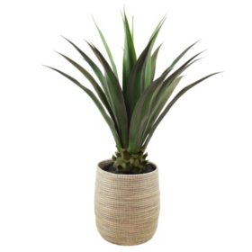 """Faux Agave 42"""""""