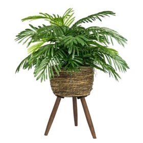 "Faux 30"" Phoenix Palm in Handwoven Tripod Stand Basket"