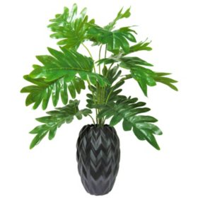 "24"" Tropical Plant in Ceramic Base with Zigzag Pattern"