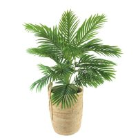"""Faux 42"""" Palm in Handwoven Organic Seagrass Basket"""