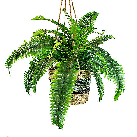 "Faux 30"" Boston Fern in Hanging Handwoven Basket"
