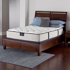 Serta Perfect Sleeper Castleview Plush Queen Mattress Set