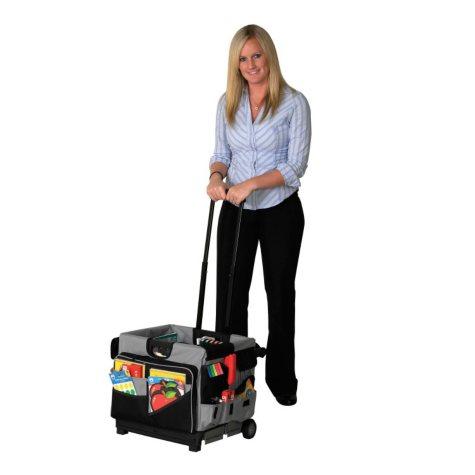 ECR4Kids MemoryStor Classroom Cart and Organizer Set