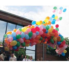 Deluxe Balloon Net