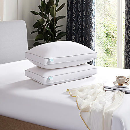 Martha Stewart 240 Thread Count White Feather and Down Pillow (2-pack)