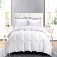 Deals on Blue Ridge White Goose Feather and Down Comforter and Pillow Set Twin