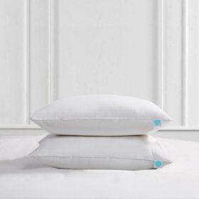Martha Stewart 240 Thread Count Polyester Down Pillow, 2 pack