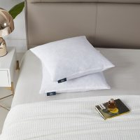 """Serta Deco 20"""" x 20"""" Square Feather Pillow Insert, 2 Pack"""
