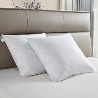 """Martha Stewart Deco 20"""" x 20"""" Square Feather Pillow Insert, 2 Pack"""