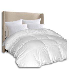 1000-Thread-Count Pima Cotton Down Alternative Comforter (Assorted Sizes)