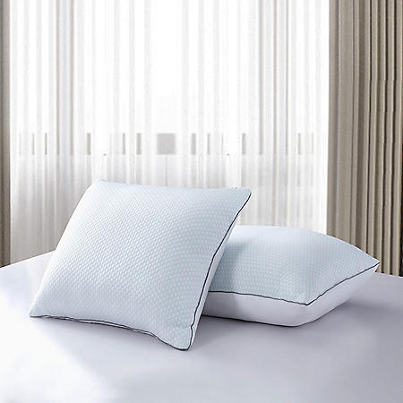 Serta Summer And Winter White Goose Feather Down Bed Pillow (2 Pack)