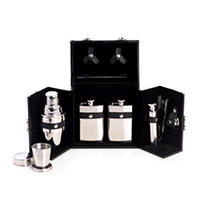 Ten Piece Stainless Steel Bar Set in a Black Leather Carrying Case with Locking Clasp