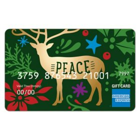 $50 American Express Enchantment eGift Card (Email Delivery)