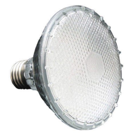 PAR30 LED Bulb - 2.5W - Warm White