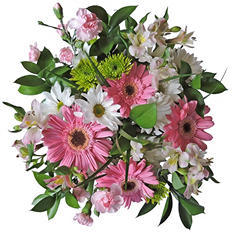 Pretty-in-Pink  Mixed Bouquet - 5 pk.