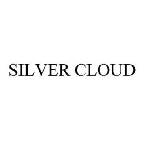 Silver Cloud Menthol Box (200 ct.)