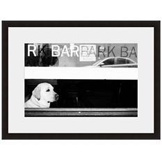 Framed Fine Art Photography - Waitin' for a Friend by Robert Evans