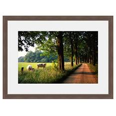 Framed Fine Art Photography - Charming Country Road By Blaine Harrington