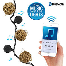 Bright Tunes Indoor/Outdoor Wicker Globes String Lights with Bluetooth Speakers (Black Cord)