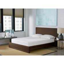 "Spring Air 10"" Performance Foam Queen Mattress"