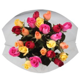 Double Dozen Roses, Assorted Rainbow Colors (24 stems)