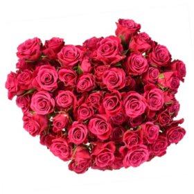 Spray Roses (variety and colors may vary)