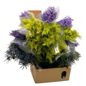 Mixed Filler Flowers Box (180 stems)
