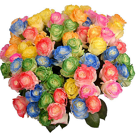 Roses, Tinted Rainbow Illusion (72 stems)
