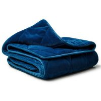 Dream Theory Butter Velvet Machine Washable Weighted Blanket 15lb 48x72
