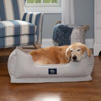 """Serta Easy Lounge Ortho Snuggler Pet Bed, 34"""" x 24"""" - Various Colors"""