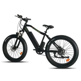 GoSpeedBike Electric All Terrain Bicycle with 500W Removable 48V 110AH Lithium-Ion Battery
