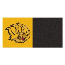 NCAA - University of Arkansas at Pine Bluff Team Carpet Tiles