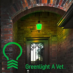 Greenlight A Vet 2-pack Shatter Proof Meilo LED Light Bulb, A19 Green