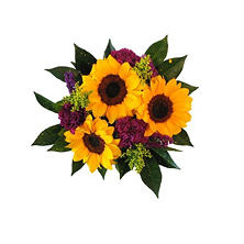 Sunflower Bouquet, Moonique (5 bouquets)