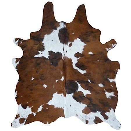 Decohides Real Cowhide Rug, Tricolor