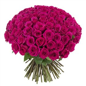 100 Stems Rose Bouquet, Vase Included (choose Red, Hot Pink, or Rainbow)