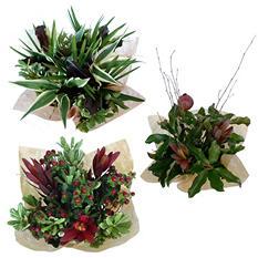 Mixed Greens Bouquet