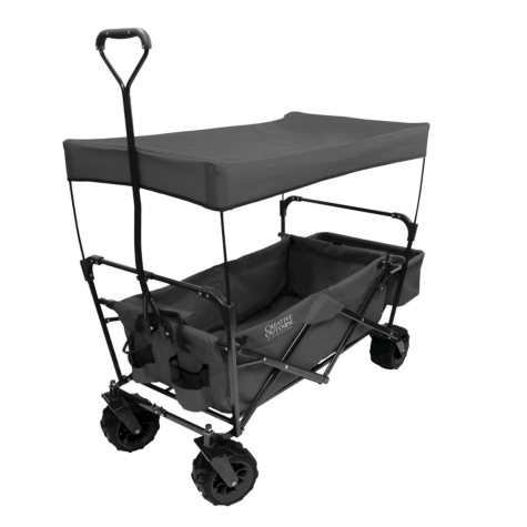 Folding Wagon with Removable Canopy
