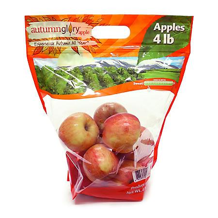 Autumn Glory Apples (4 lb. bag)