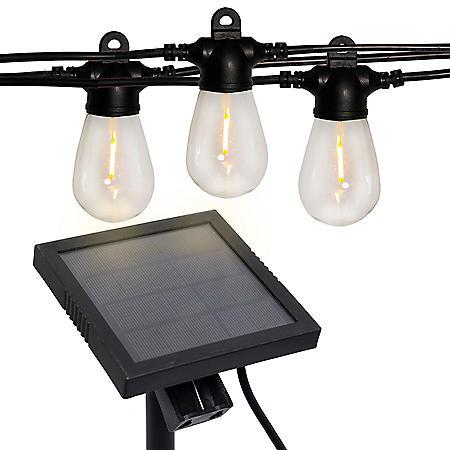 Westinghouse 48' Vintage White Solar Powered LED String Lights