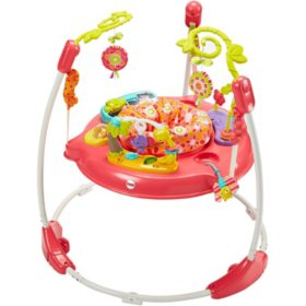 Fisher-Price Jumperoo, Pink Petals