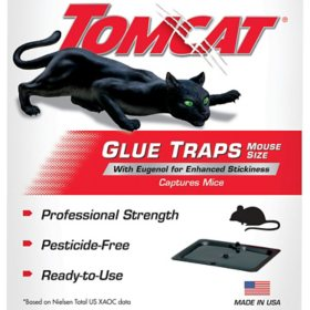Tomcat Glue Traps Mouse Size with Eugenol for Enhanced Stickiness, 4 Traps