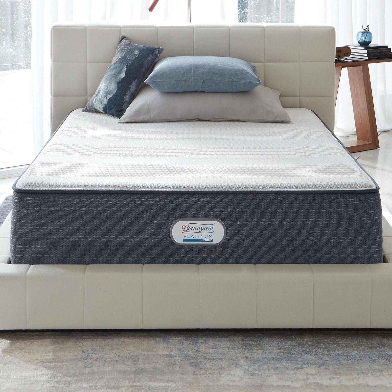 299 00 Serta Perfect Sleeper Wynstone Ii Cushion Firm Eurotop
