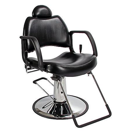 Stupendous All Purpose Salon Chair Home Interior And Landscaping Eliaenasavecom