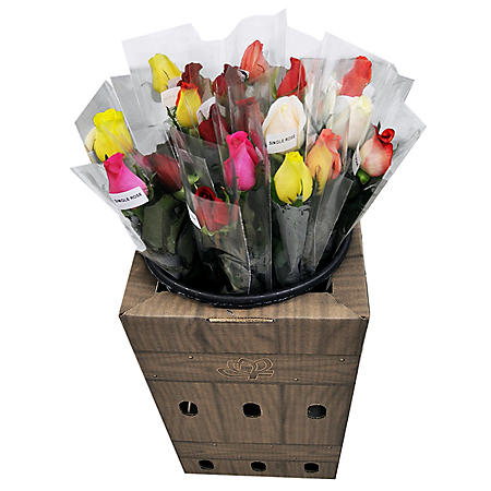 Individually Sleeved Roses with Display Box (25 single-stem bouquets)