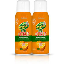 OdoBan Real Citrus Air Freshener, Orange (10oz., 2pk.)