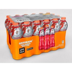 Gatorade Fruit Punch (20.83oz / 24pk)