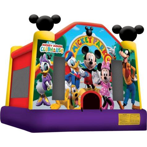 Mickey's Park Jump - 15'